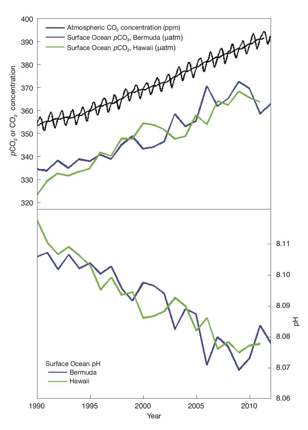 Рисунок 7. По мере увеличения уровня CO2, содержащегося ввоздухе, растёт уровень CO2 вверхних слоях океана (верхняя часть рисунка) иуменьшается pH морской воды (нижняя часть рисунка). Источники: за основу взяты Dore et al. (2009) иBates et al. (2012)