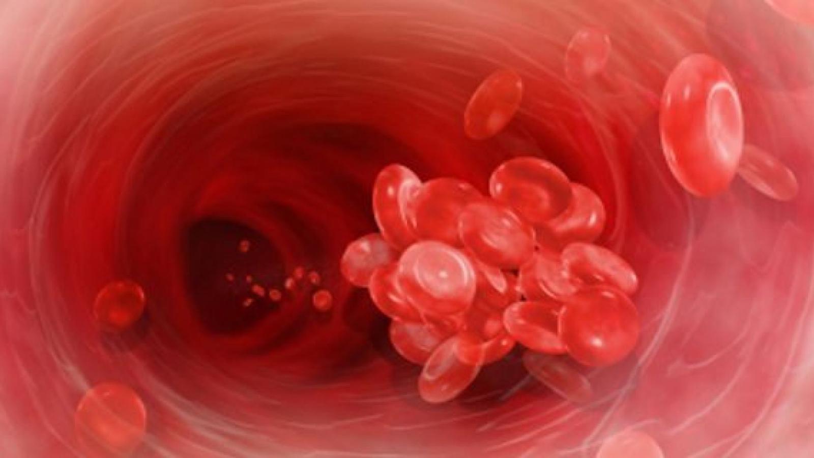 Кровяные тельца.