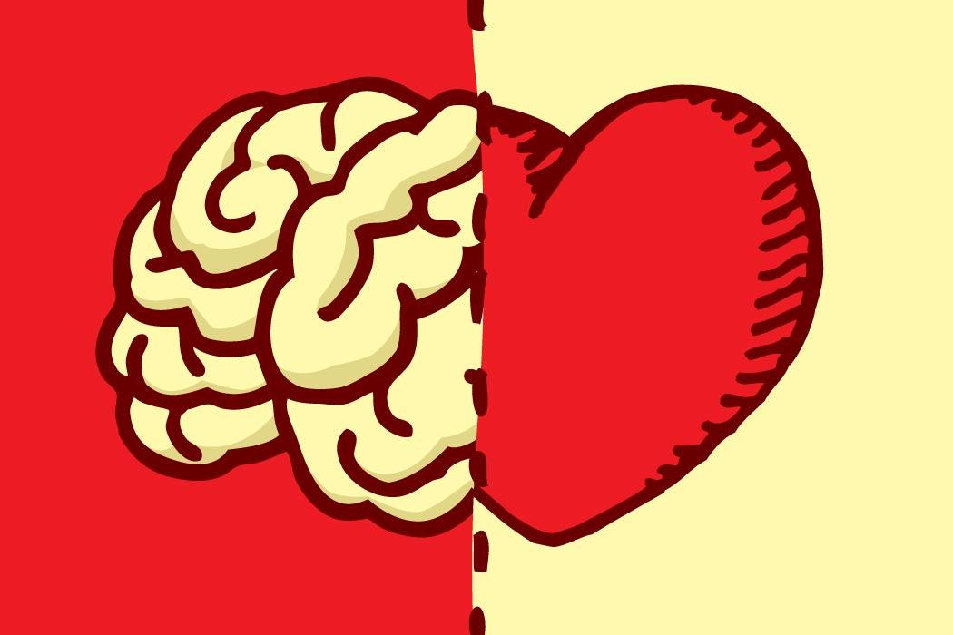 Любовь имозг: как они связаны?