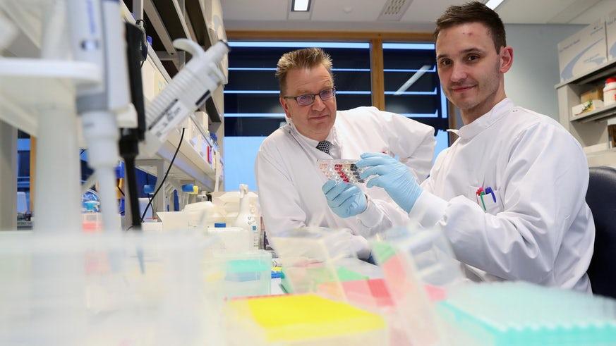 Иммунная клетка, убивающая большинство типов рака?