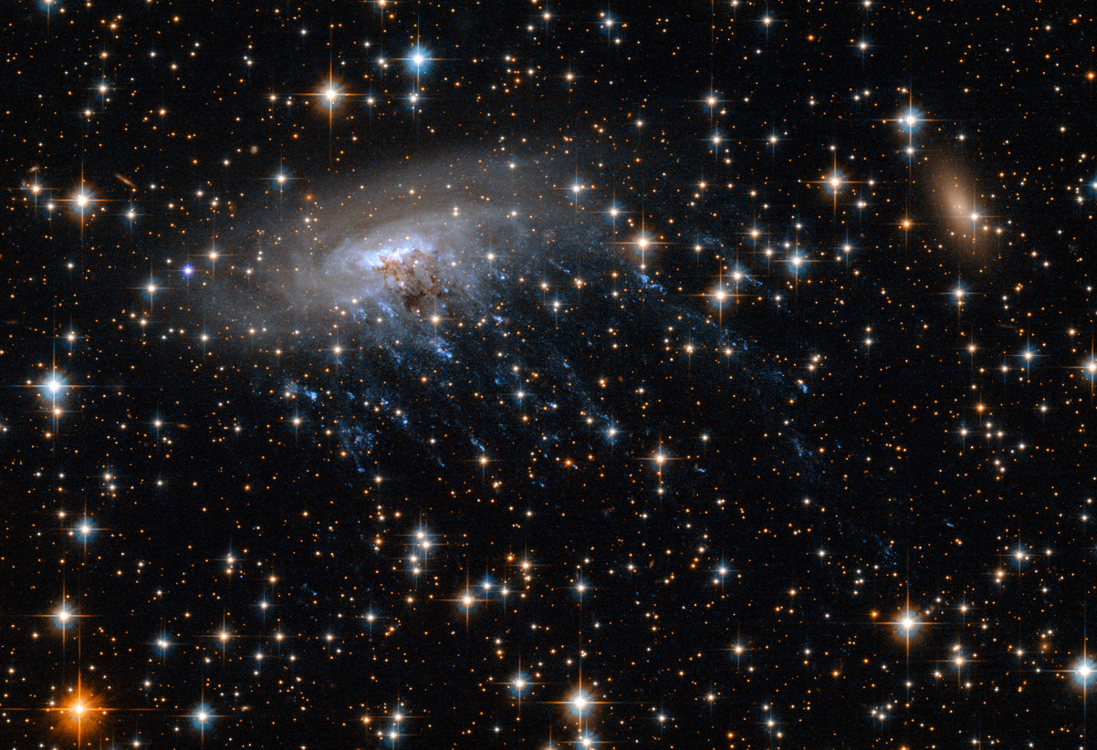 Jellyfish ESO 137-001