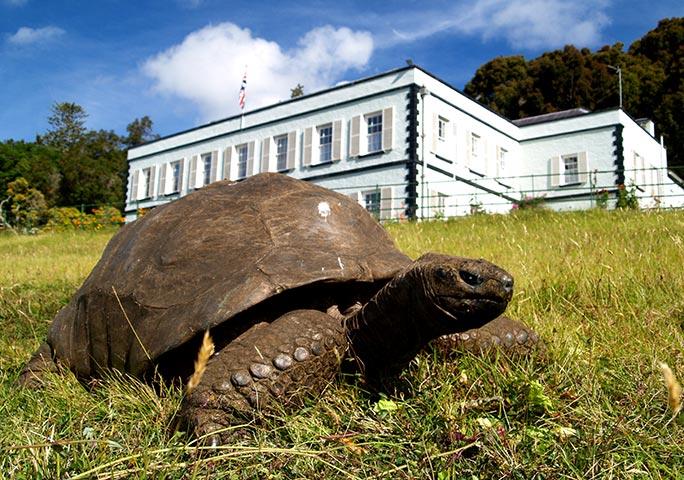 188-летний Джонатан перед домом губернатора острова