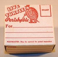 Коробочка для почтовой пересылки черепахи