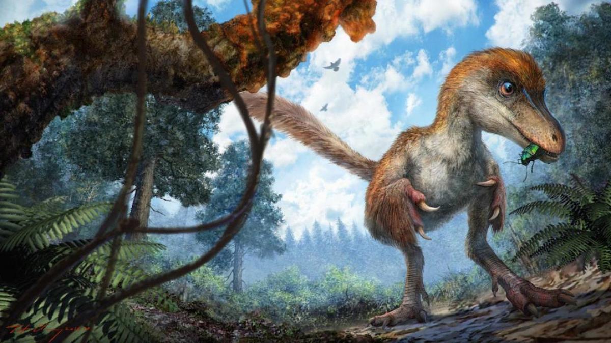 Динозавр. Представление художника.