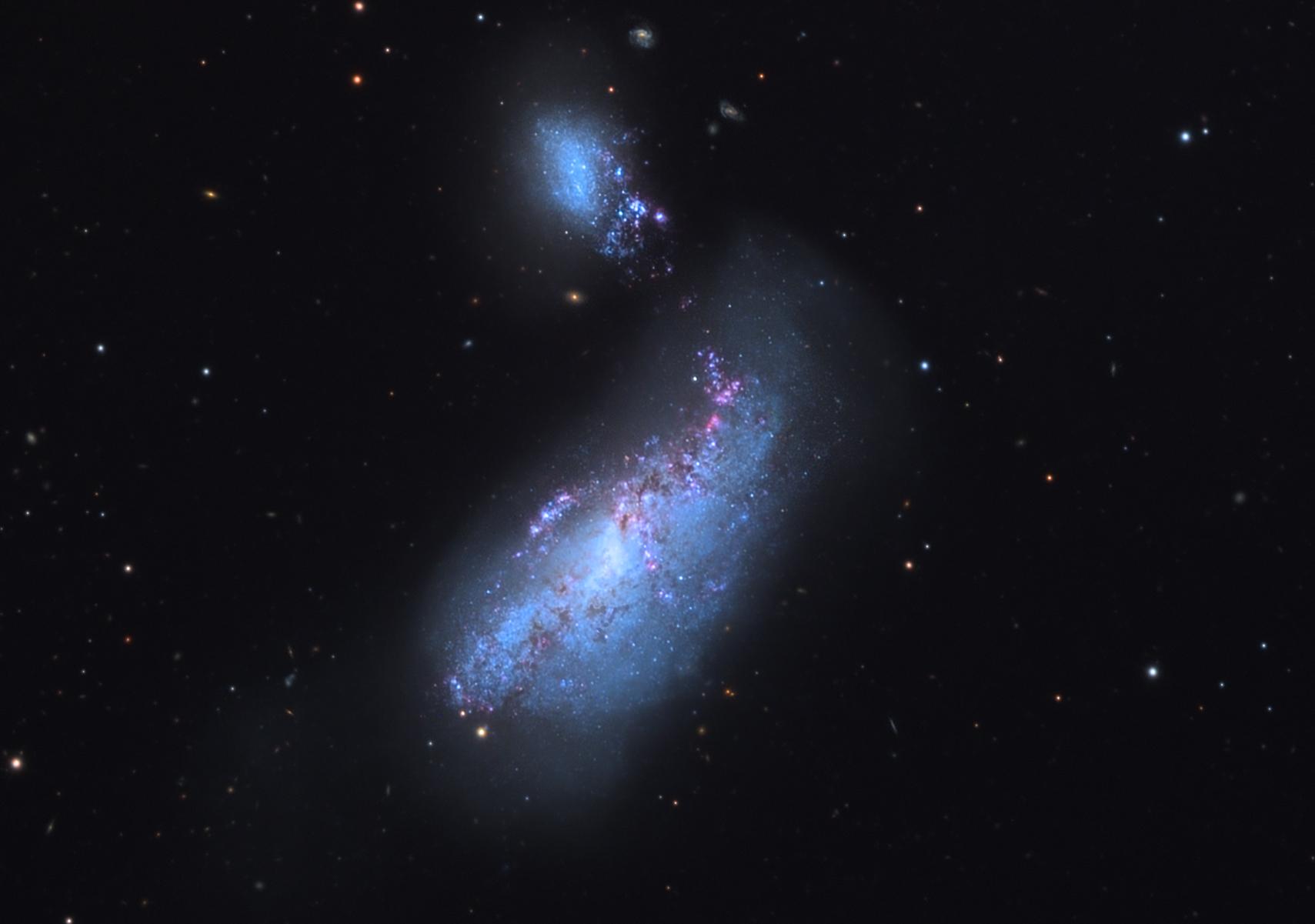 Ближайшие кнам взаимодействующие галактики NGC 4490 («Кокон») иNGC 4485.