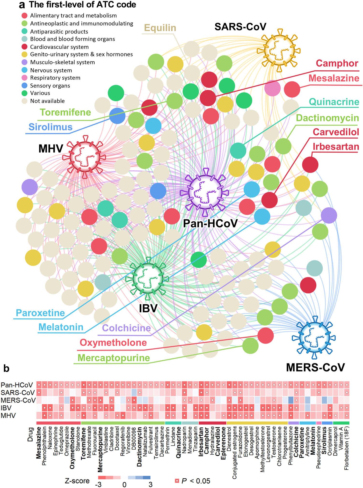 Drug-HCoV network