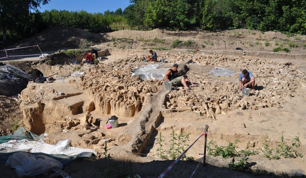 Исследователь ведут раскопки загадочного сооружения из 64-х мамонтов
