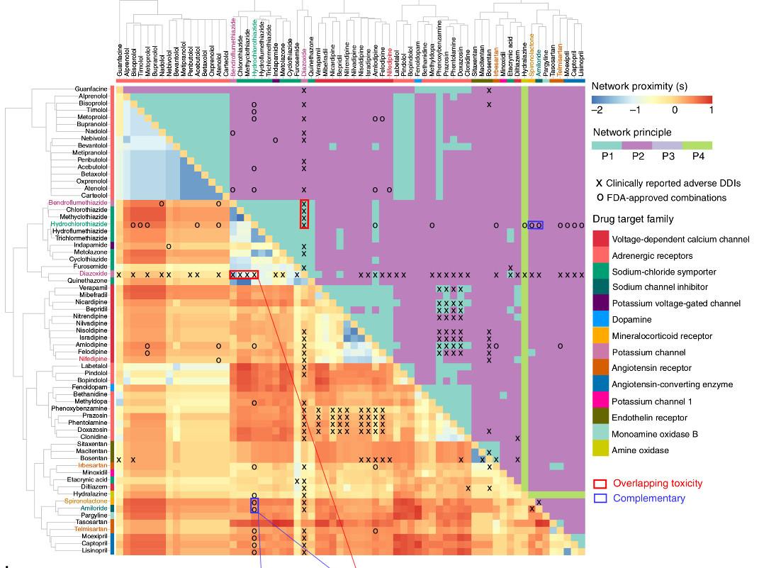 """Подбор комбинаций препаратов наосновании сетевого анализа. Из: <a href=""""https://www.nature.com/articles/s41467-019-09186-x"""">Cheng et al., <i>Nat Commun</i> <b>10</b>, 1197 (2019)</a>."""