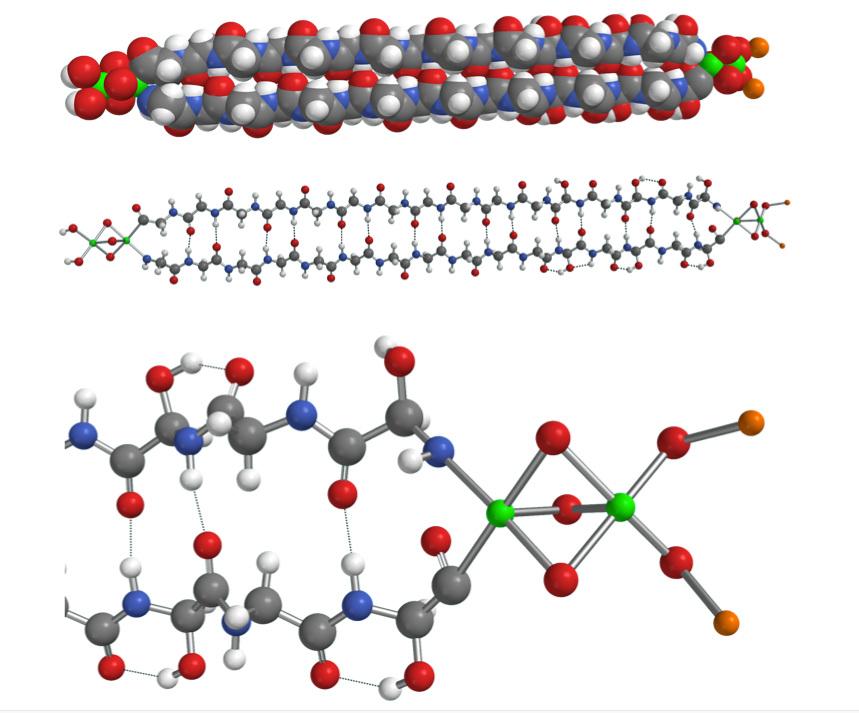 Hemolithin model