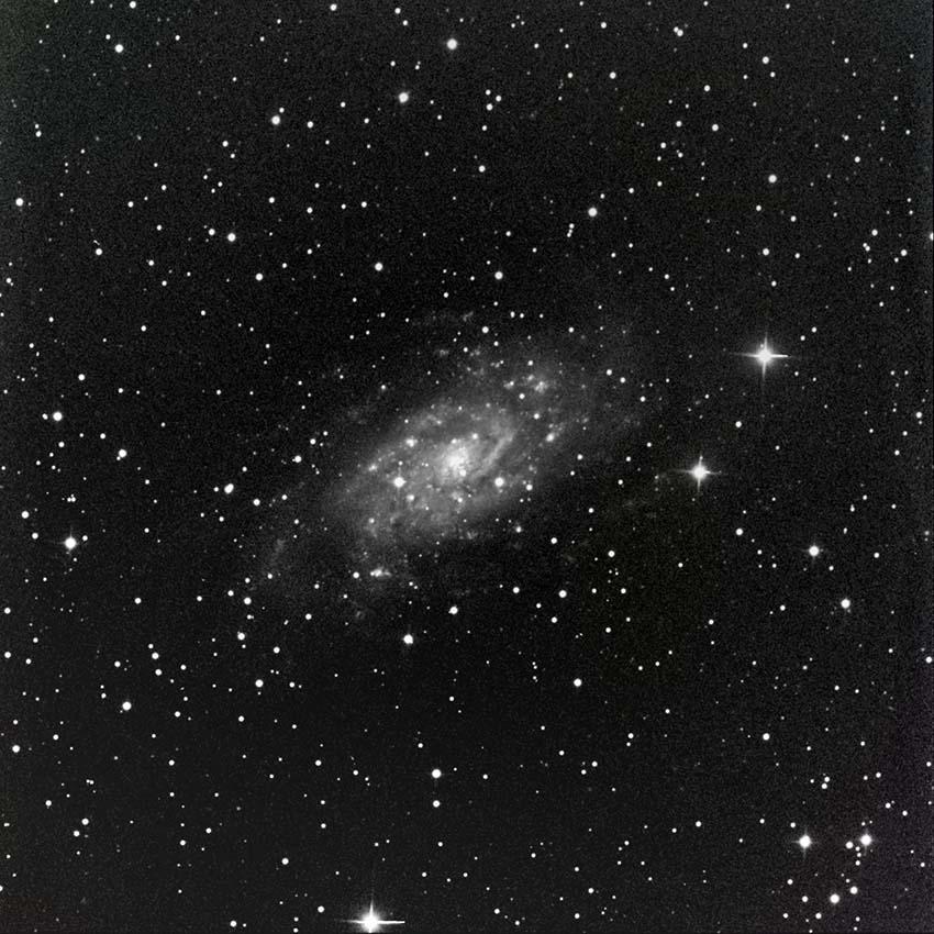 NGC2403 Cameleopardalis