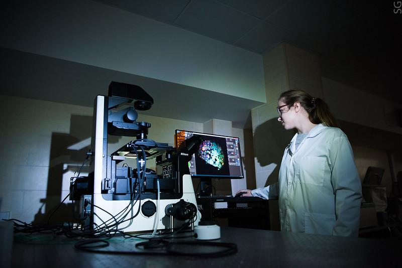 Исследование синтеза наночастиц. Для самых разных приложений важно научиться создавать внеобходимых количествах наночастицы со строго заданными свойствами.