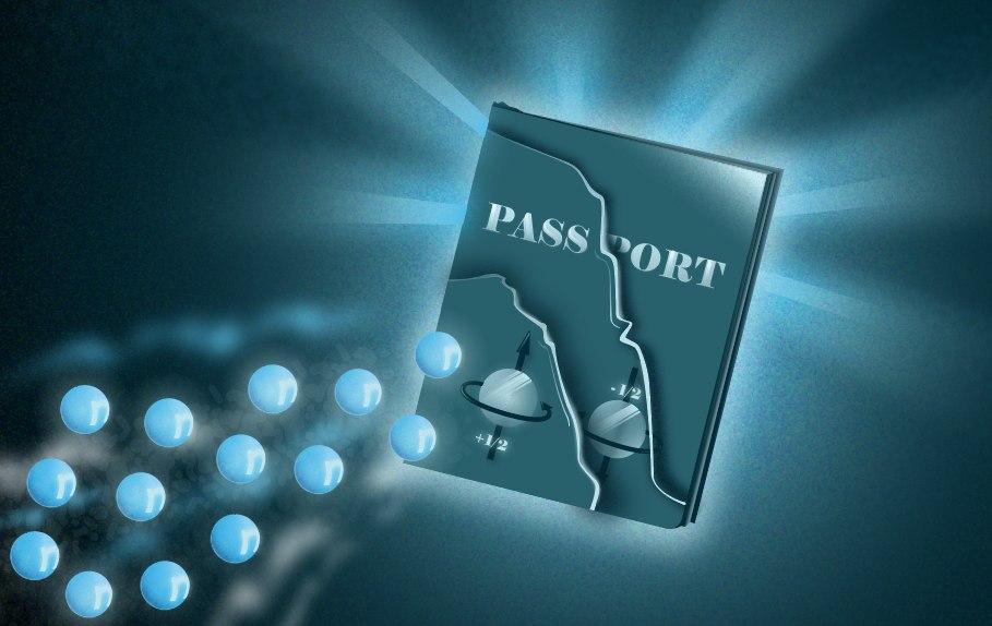 Паспорт для спин-долинных полуметаллов. Дизайнер— Дарья Сокол, пресс-служба МФТИ.