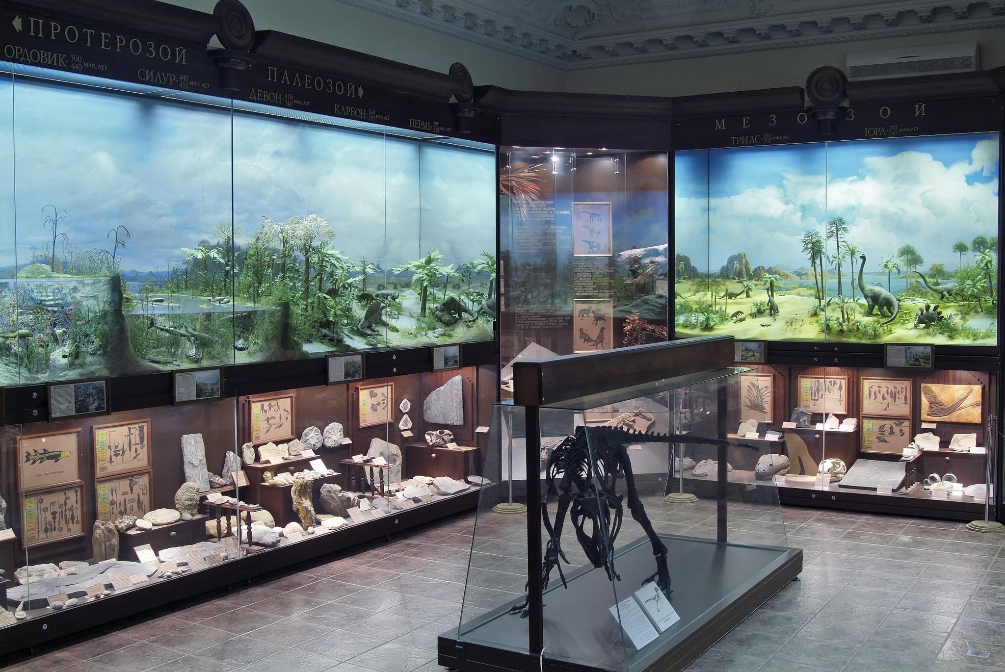 Выставка вГосударственном биологическом музее имени К.А. Тимирязева.