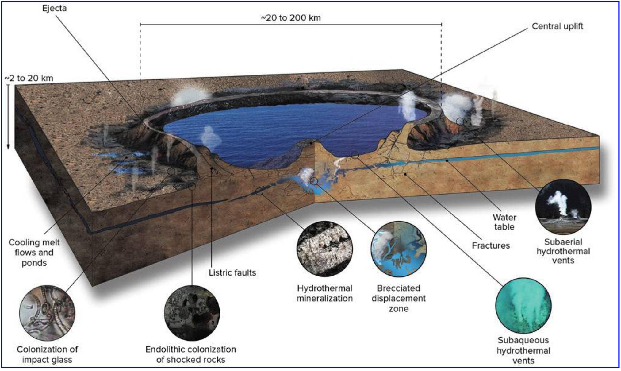 "Гидротермальная фаза развития ударного кратера. <a href=""https://www.liebertpub.com/doi/10.1089/AST.2019.2203"">G.Osinski et al., <i>Astrobiology</i> <b>20</b>, 1121 (2020)</a>."