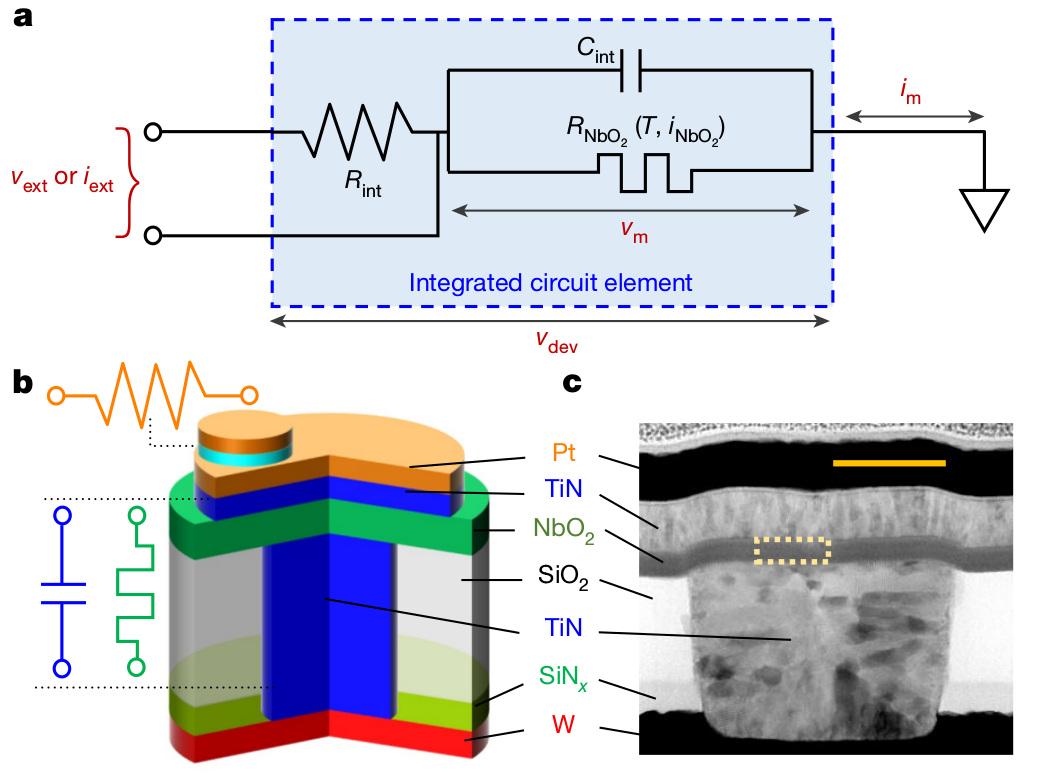 """Наноустройство наоснове мемристора Мотта (слой NbO<sub>2</sub>) для имитации нелинейного поведения нейрона. Масштаб около 30 нм. <a href=""""https://www.nature.com/articles/s41586-020-2735-5"""">S.Kumar et al., <i>Nature</i> 585, 518 (2020)</a>."""