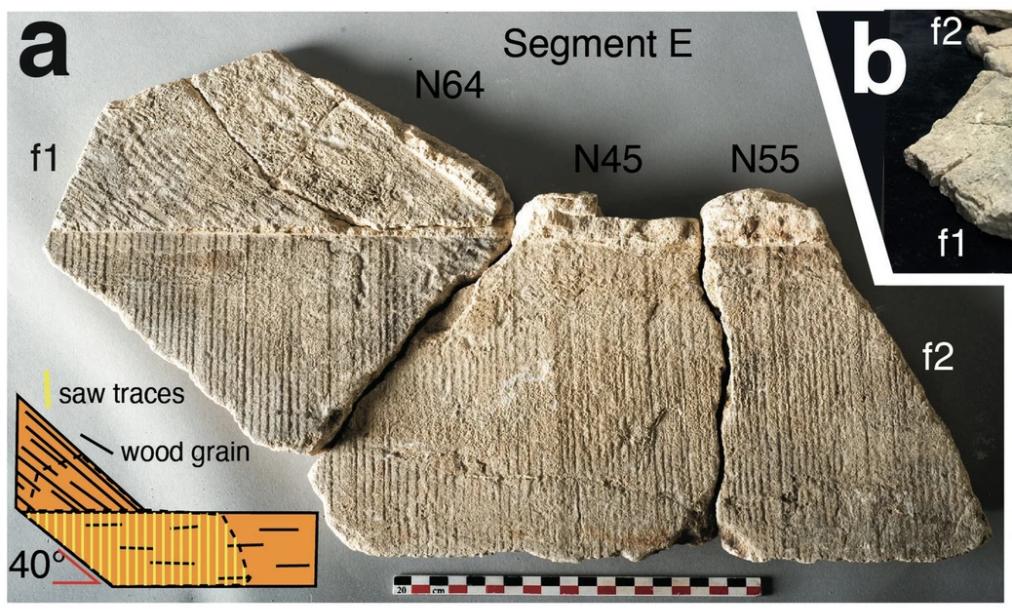 Фрагмент корки, образовавшийся надвух стыкующихся досках. Видны следы пиления механической пилой