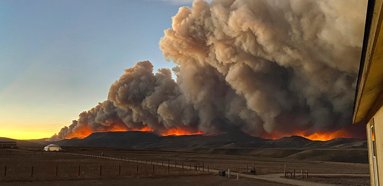 Природа в2020 году совсем неочистилась— глобальные изменения климата продолжают напоминать осебе.