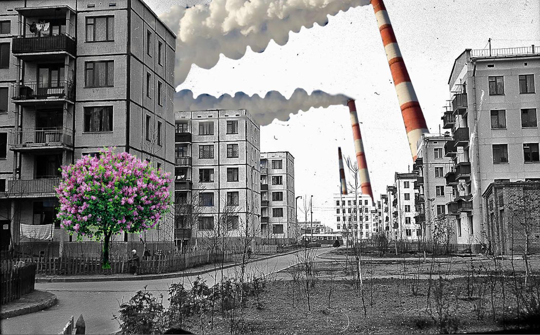Первый принцип советского природопользования— рациональность.