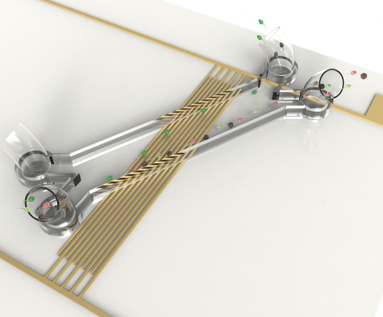 Устройство для сортировки сперматозоидов спомощью акустических волн.
