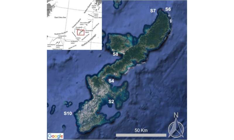 Исследователи взяли пробы для анализа намикропластик нашести участках уберегов Окинавы.