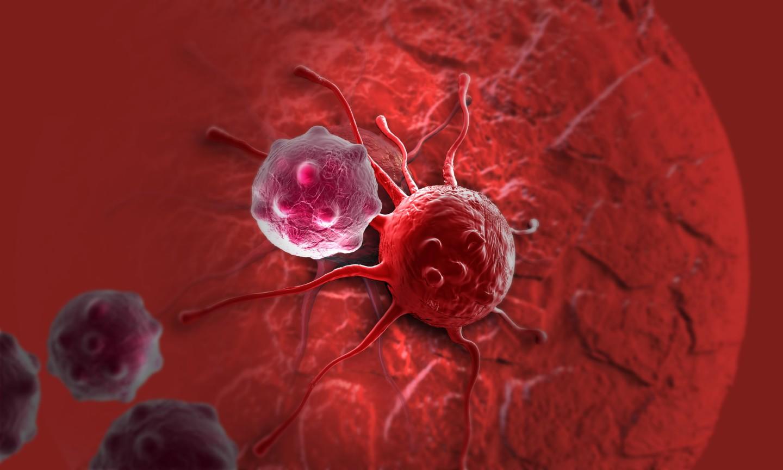 Раковые клетки противостоят химиотерапии, впадая вспячку