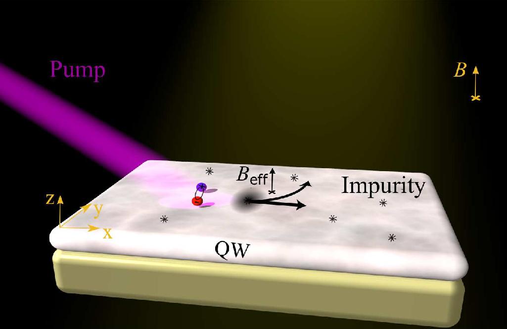 Схематическое изображение открытого эффекта. Экситоны, создаваемые оптической накачкой, перемещаются вплоскости вприсутствии однородного ортогонального магнитного поля.<br />Магнитное поле индуцирует дипольный момент экситонов, что приводит ких асимметричному рассеянию.