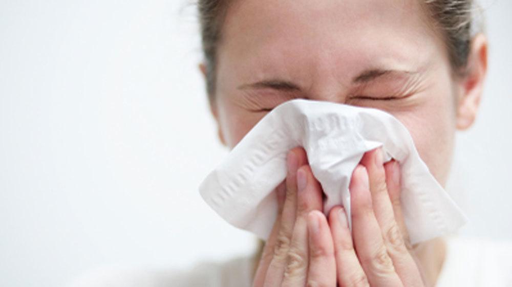 Риновирусы, вызывающие ОРЗ,— одни из самых распространённых среди людей вирусов.
