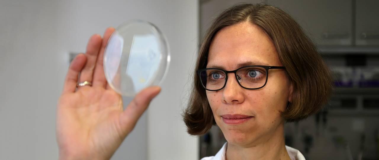Профессор Карен Алим (Dr. Karen Alim) влаборатории.