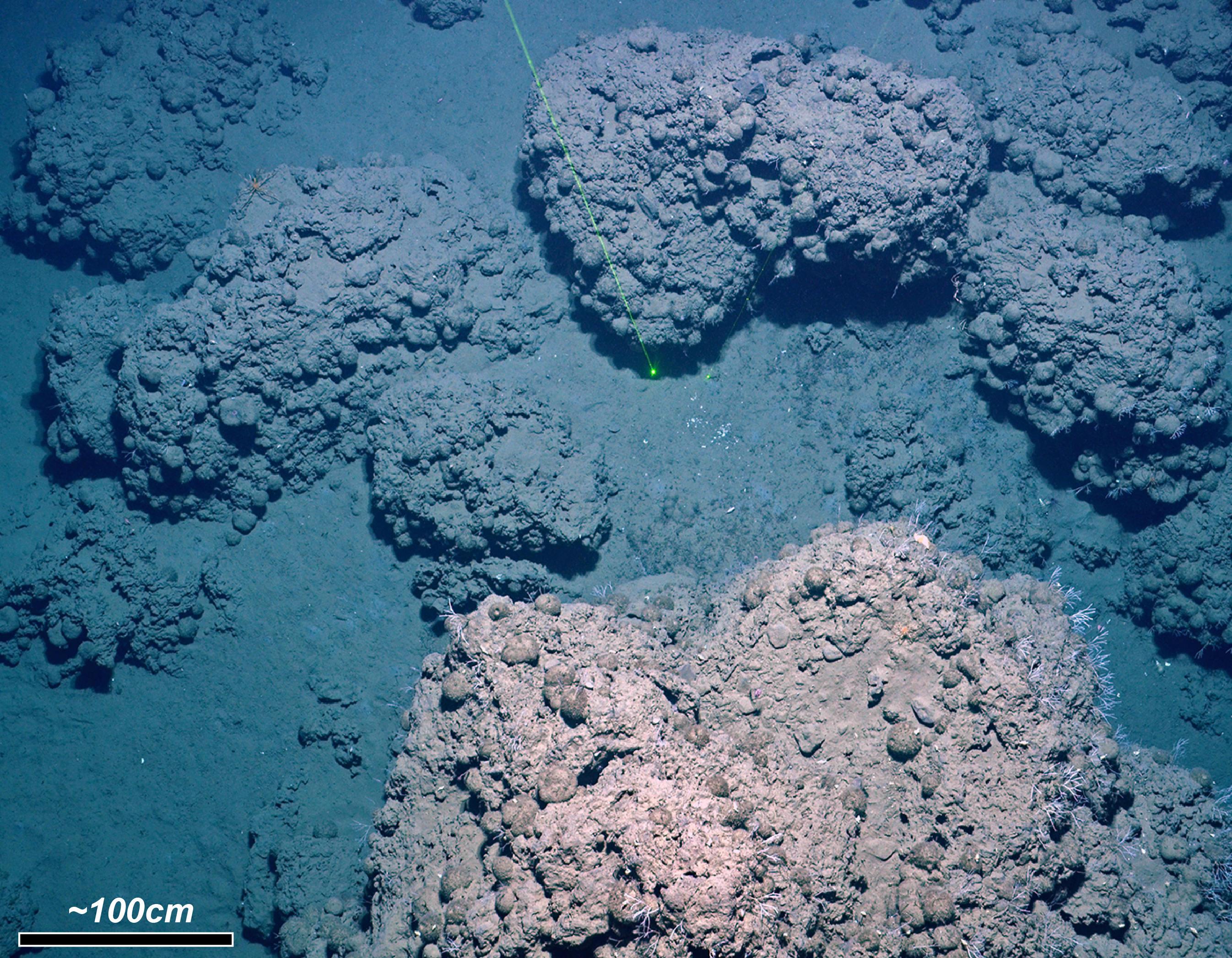 Carbonate deposits and methane seepage