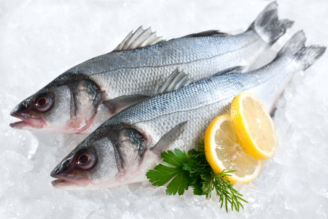 Сибас (обыкновенный лаврак)— «завсегдатай» рыбного меню