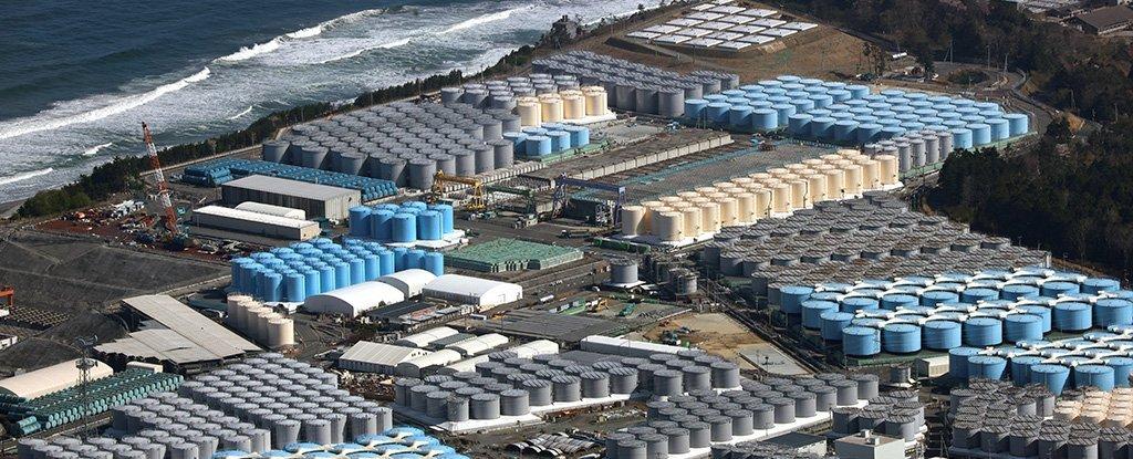 Загрязнённые сточные воды заполняют более 1000 резервуаров наплощадке АЭС Фукусима.