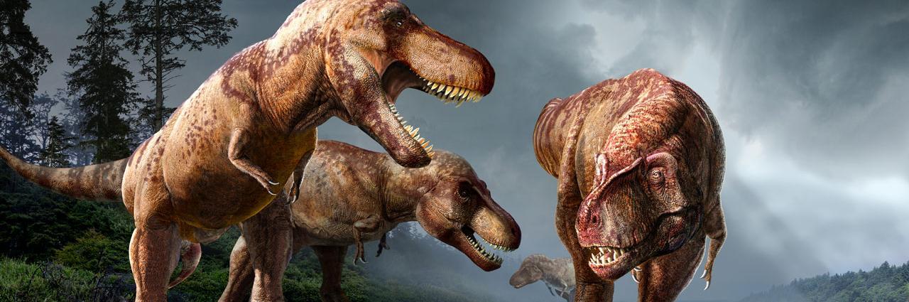 Динозавры собложки <i>Science</i>.
