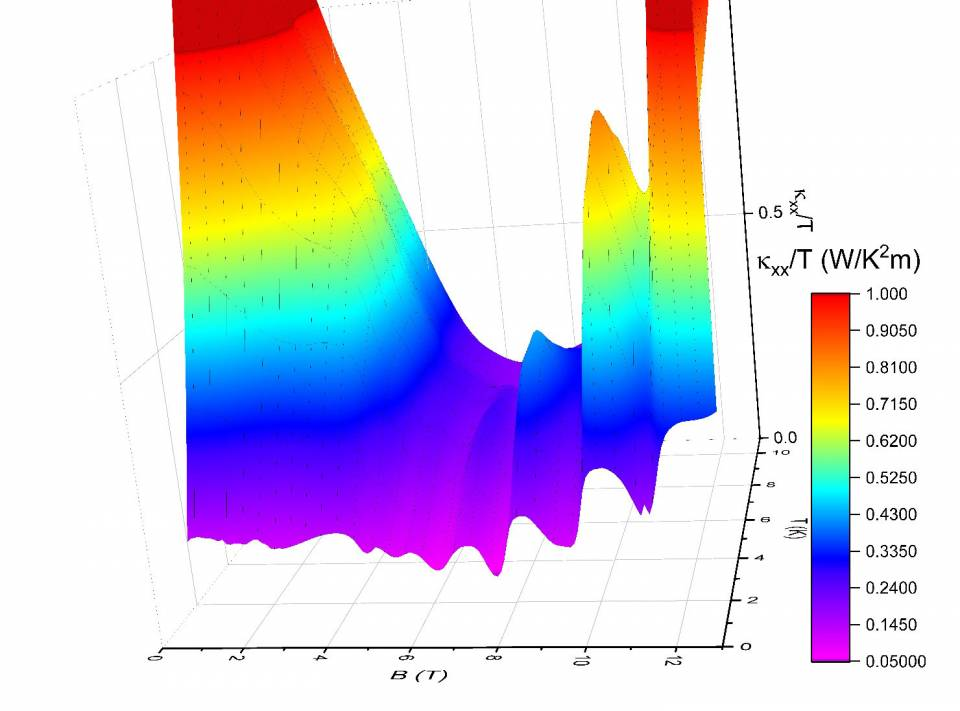 quantum oscillations of thermal conductivity