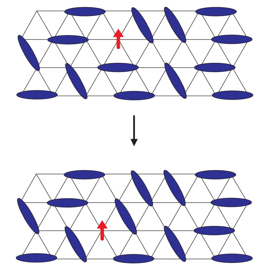 Spinos in quantum spin liquid