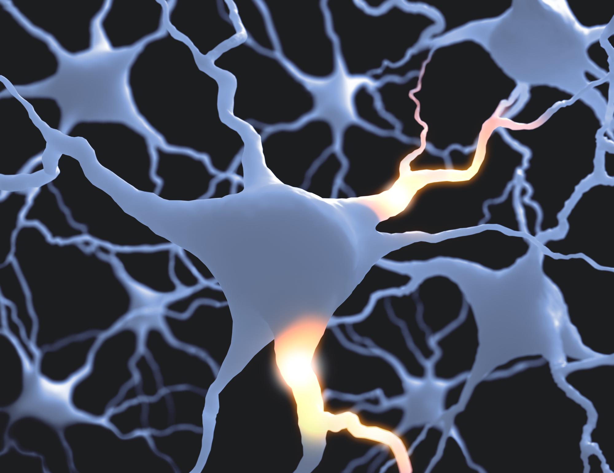 <dfn>Сонотермогенетика</dfn> может помочь втерапии различных неврологических заболеваний.