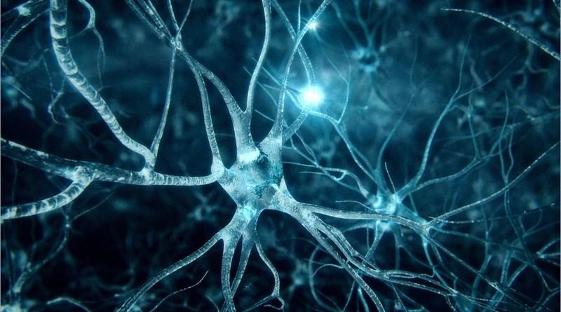 Болезнь Альцгеймера годами развивается незаметно.