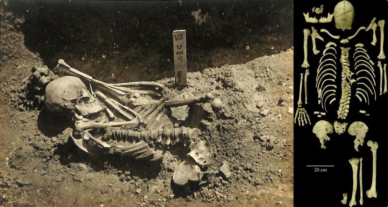 Оригинальная фотография раскопанного захоронения Цукумо № 24 ифото сохранившегося скелета.