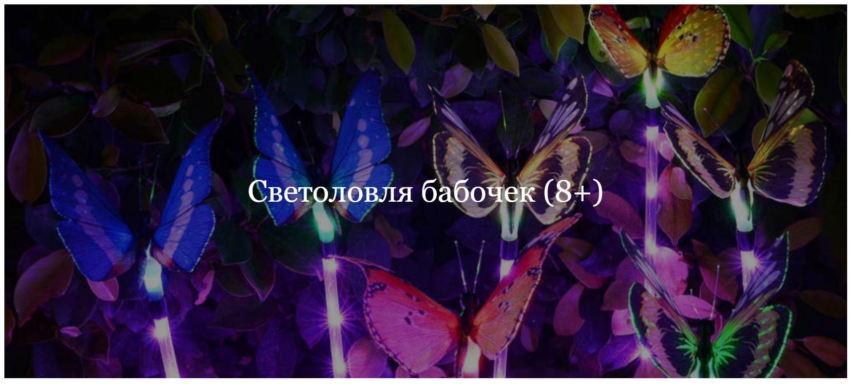 Светоловля бабочек вСанкт-Петербурге.