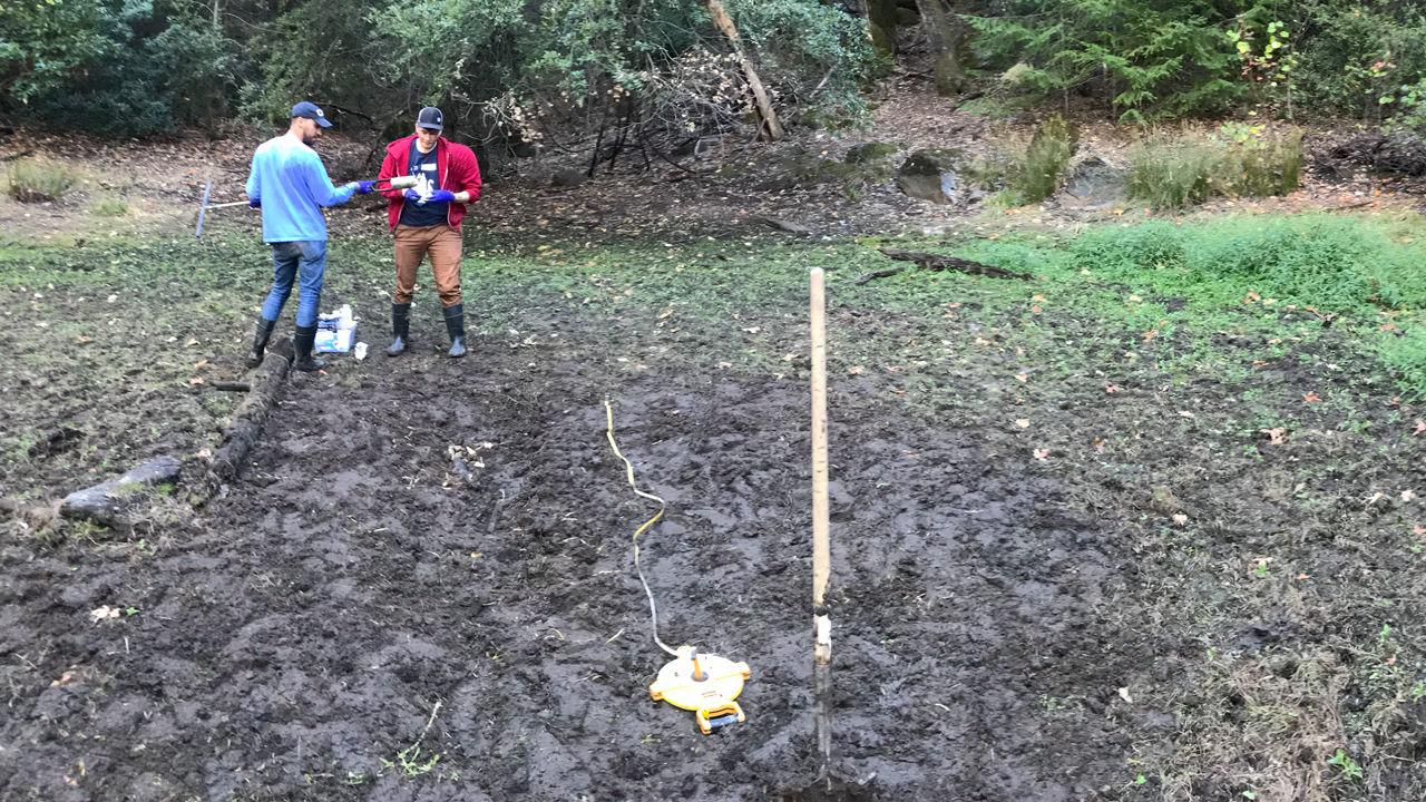 Таинственные генетические последовательности извлечены из калифорнийской грязи.