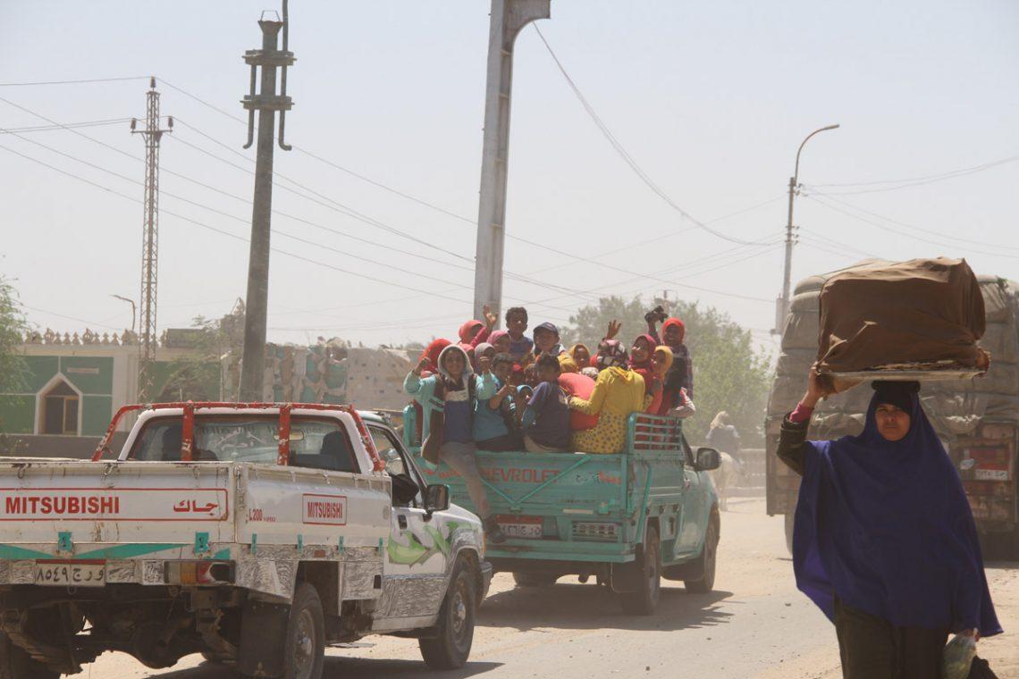 Езда по египетской дороге— это весело