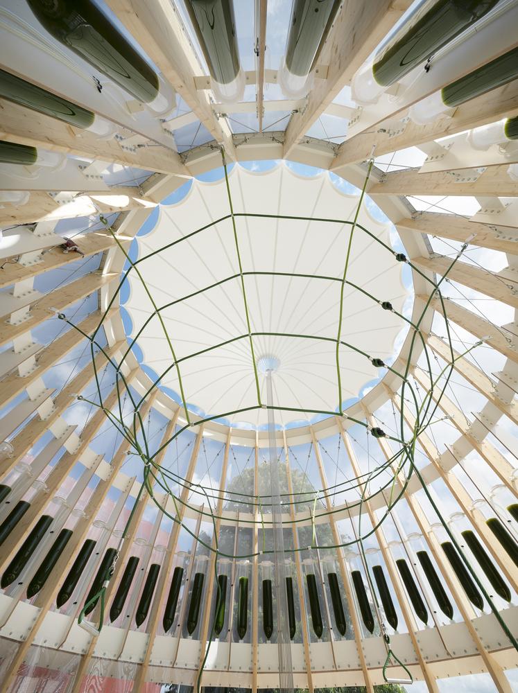 Перевёрнутый купол, вид снизу