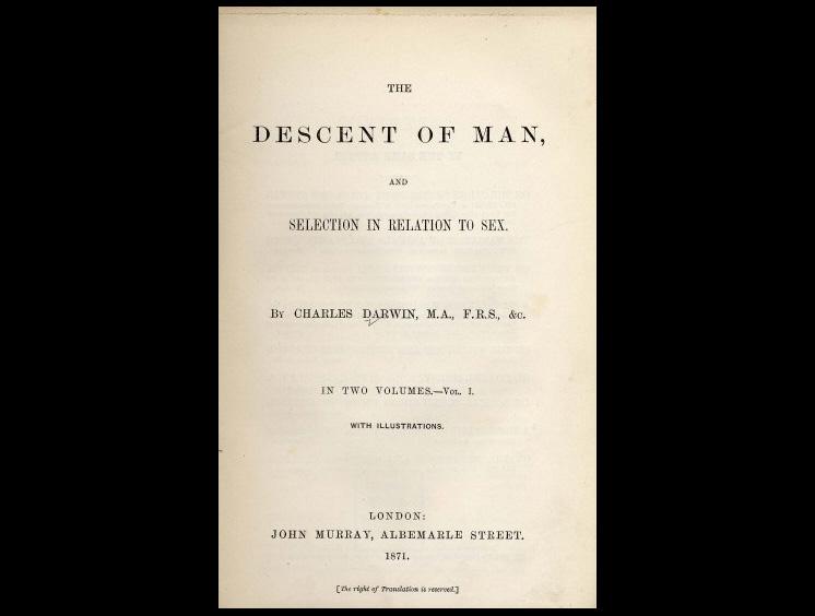 Титульный лист первого издания книги Чарльза Дарвина «Происхождение человека иполовой отбор», 1871 год