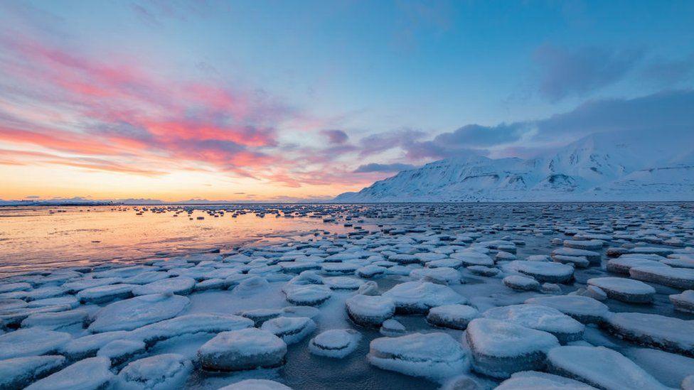 ВАрктике потепление климата наиболее выражено.