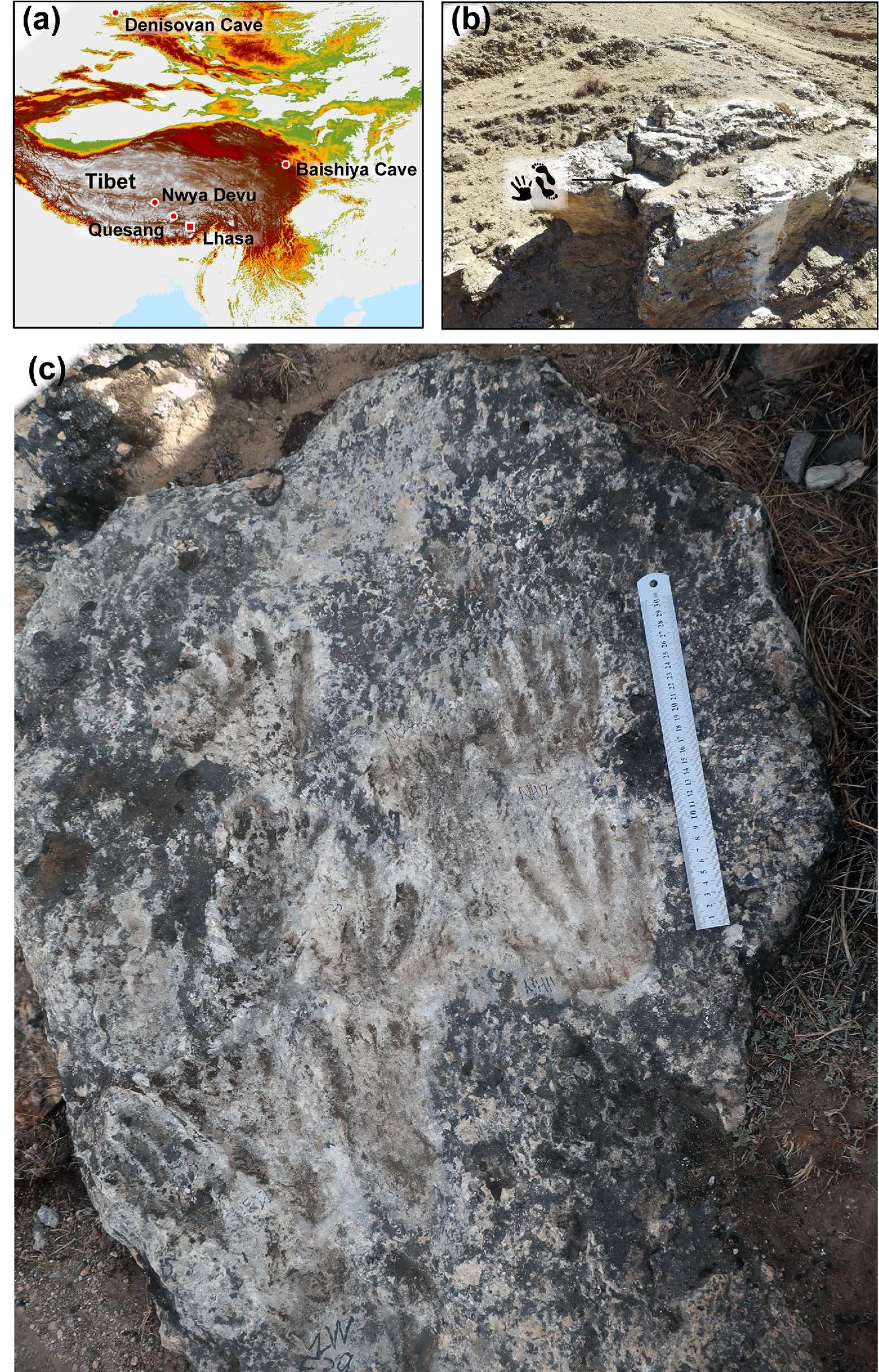 а) Карта Тибетского плато сотмеченными известными памятниками, b) место расположения «арт-панно» вКесанге, c) Древние отпечатки вКесанге.