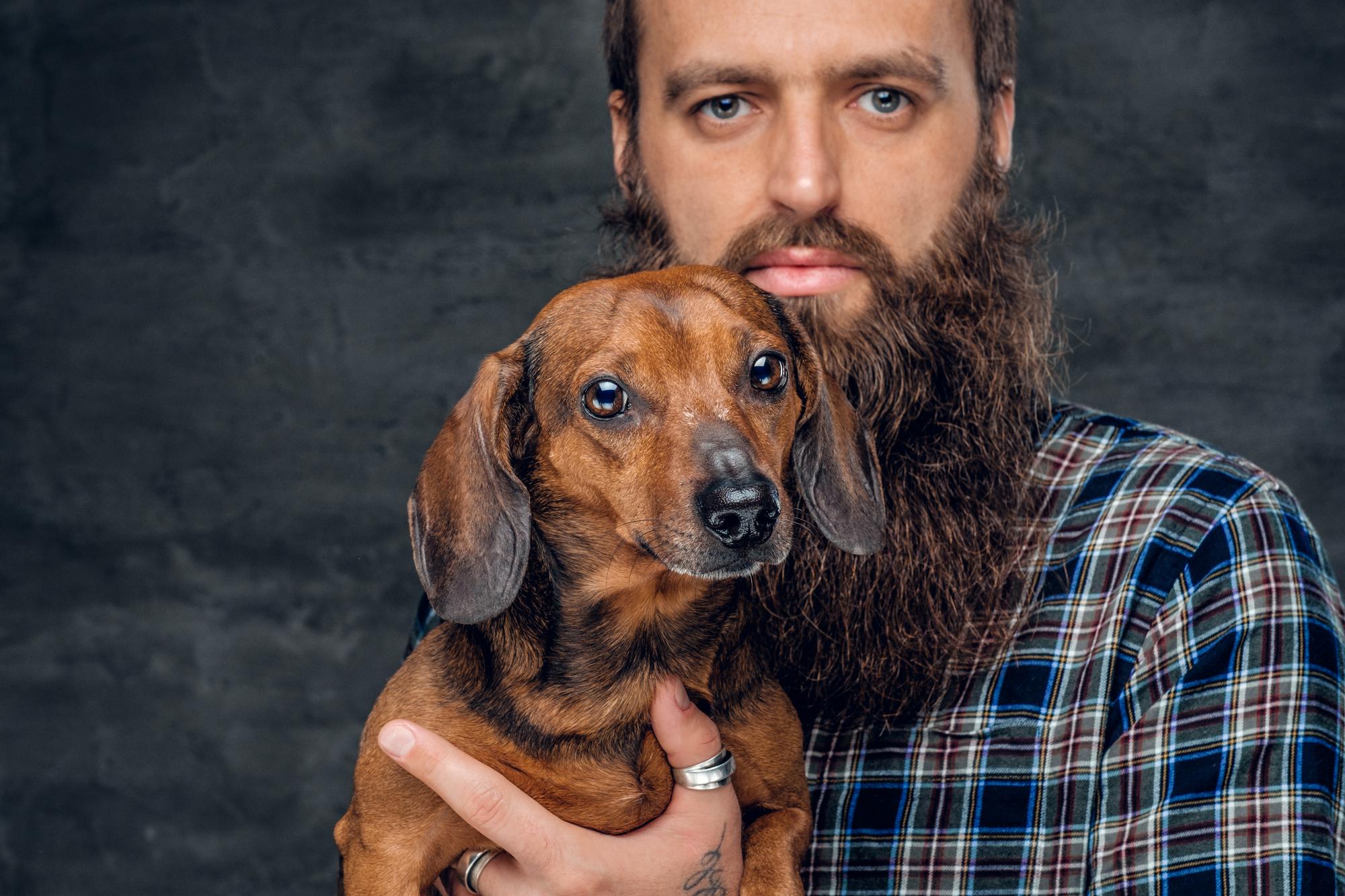 Удивительно ли, что ввашей бороде больше бактерий, чем вшерсти вашей собаки, если исама борода больше, чем сама собака?