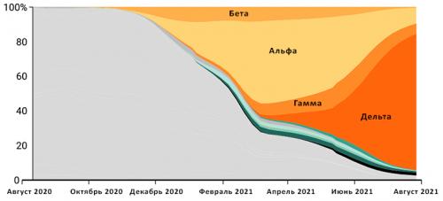 Штаммы SARS-COV-2 начали возникать в2020 году. Вначале 2021 года во многих странах появился штамм альфа, затем его почти полностью вытеснил штамм дельта. Два других особо опасных штамма, бета игамма, встречаются реже
